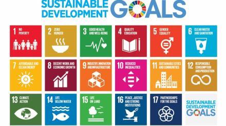PENDATAAN SDGs DESA 2021